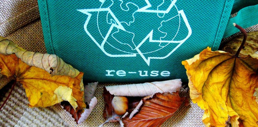 3 in 4 Brits dreaming of a compostable Christmas